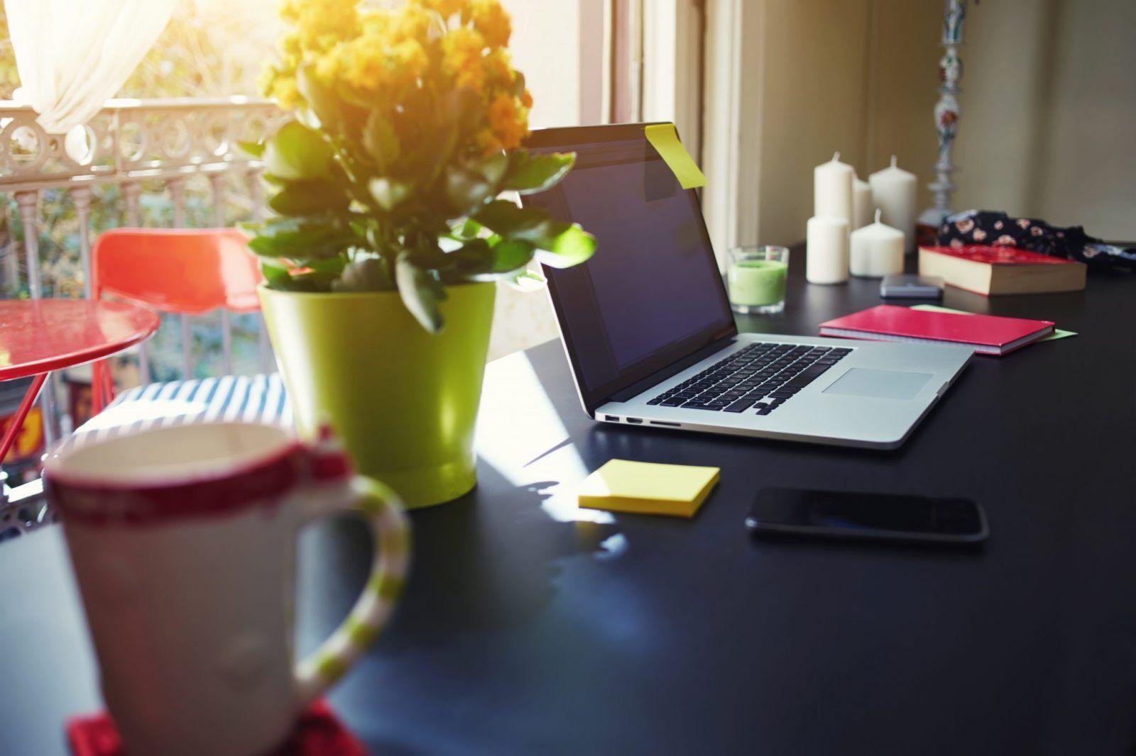 Macbook czy laptop – który sprzęt wybrać?