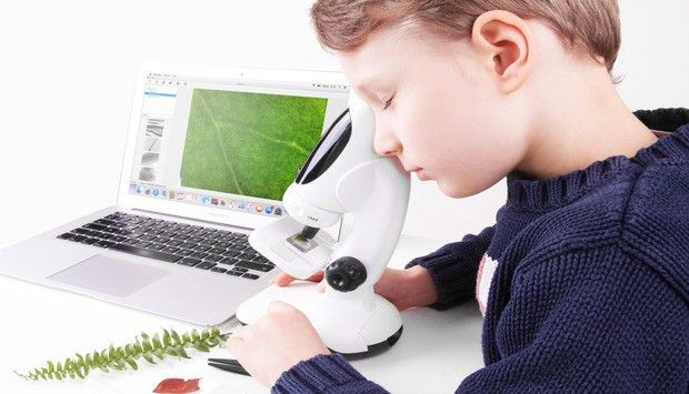 Firma Infinoptix wchodzi do Polski. Dwa modele cyfrowych mikroskopów dedykowanych dzieciom i młodzieży trafiły właśnie do sklepów.