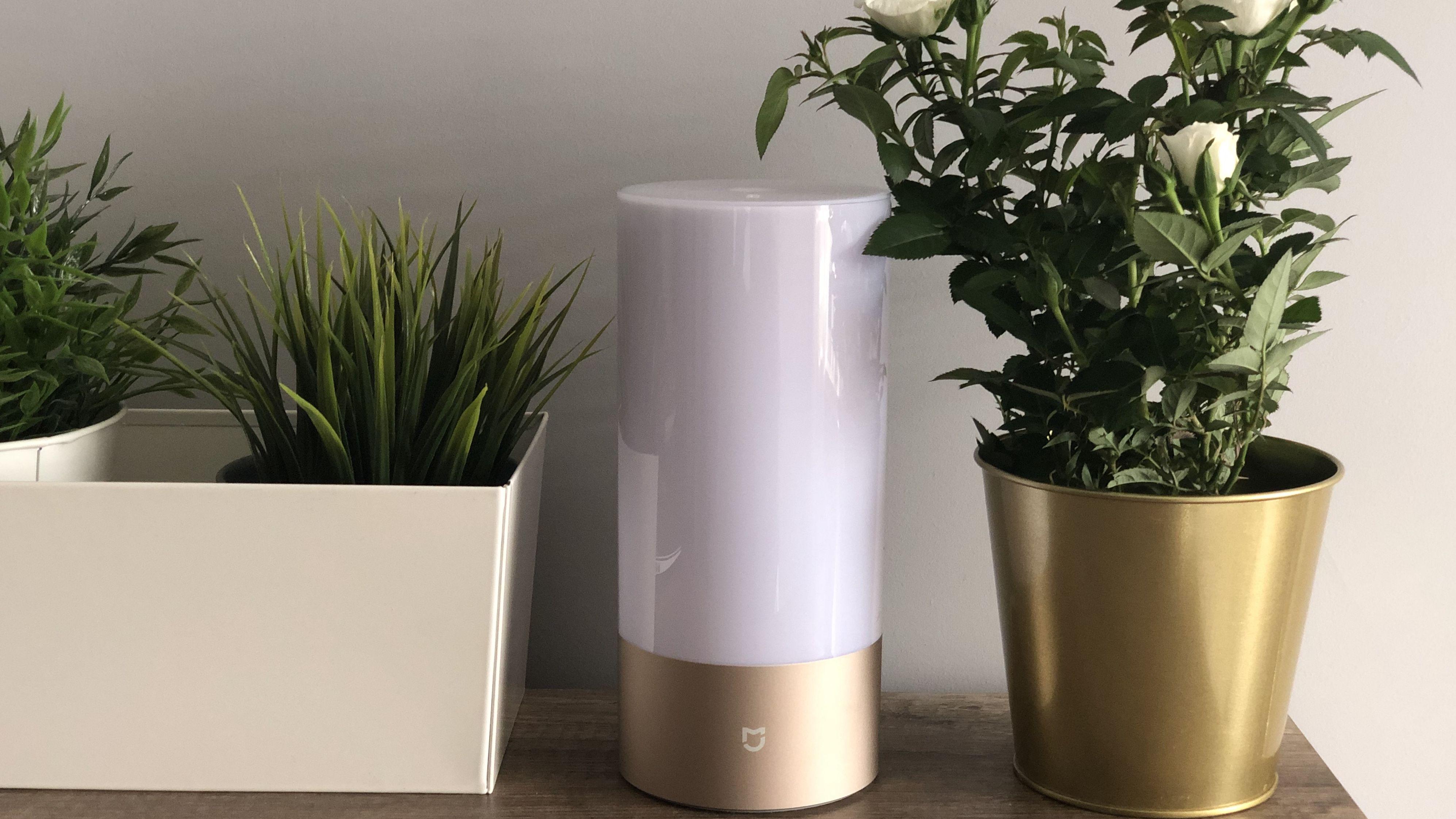 Recenzja Xiaomi Bedside Lamp – inteligenta lampka, która zachwyca ceną i możliwościami.
