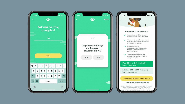 Dogo – najlepsza aplikacja po polsku do szkolenia psa z App Store!
