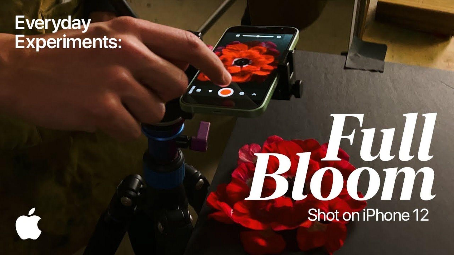 """Firma Apple udostępnia nową reklamę z serii """"Shot on iPhone"""""""